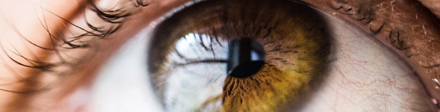 Macro close up of an eye
